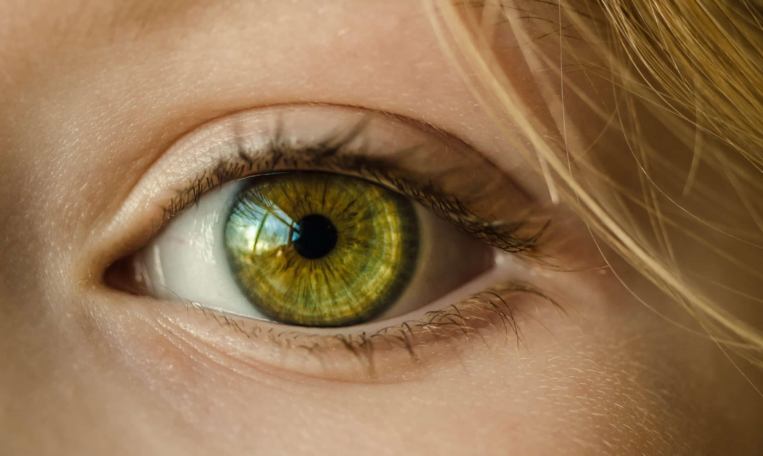 Bästa ögonkrämen